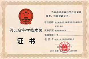 河北省科技进步一等奖