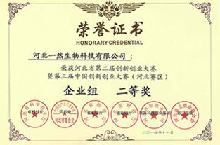 河北省创新创业大赛二等奖